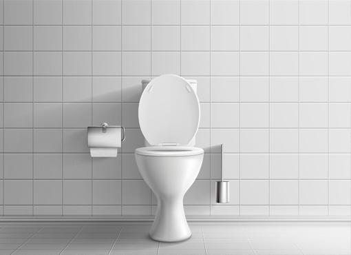 Toilette verstopft in  Ammerbuch